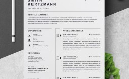 000 Unforgettable Professional Cv Template Free Word Highest Clarity  Uk Best Resume Download