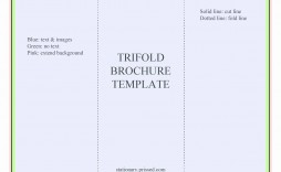 000 Unusual Brochure Template For Google Doc High Definition  Docs Free 3 Panel Tri Fold