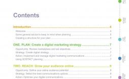 000 Unusual Digital Marketing Plan Template Download Example