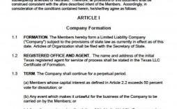 000 Wondrou Operating Agreement Template For Llc Inspiration  Form Florida Texa