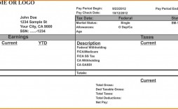 000 Wondrou Pay Stub Template Word Idea  Document Check Microsoft Free