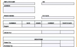 000 Wondrou Quickbook Pay Stub Template Example  Fillable Excel