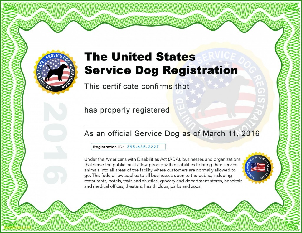000 Wondrou Service Dog Certificate Template Image  Printable Id FreeLarge