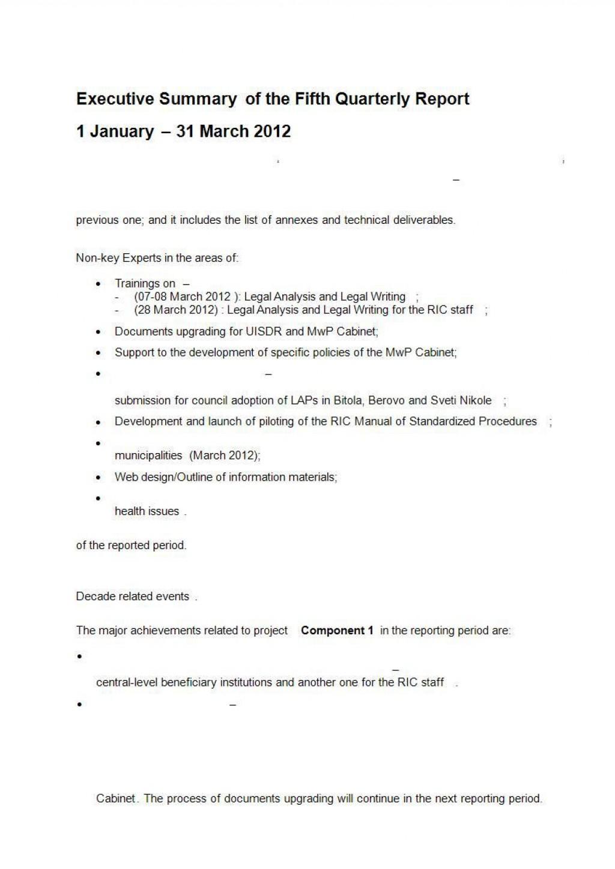 001 Amazing Executive Summary Template Doc Design  Document Example GoogleLarge