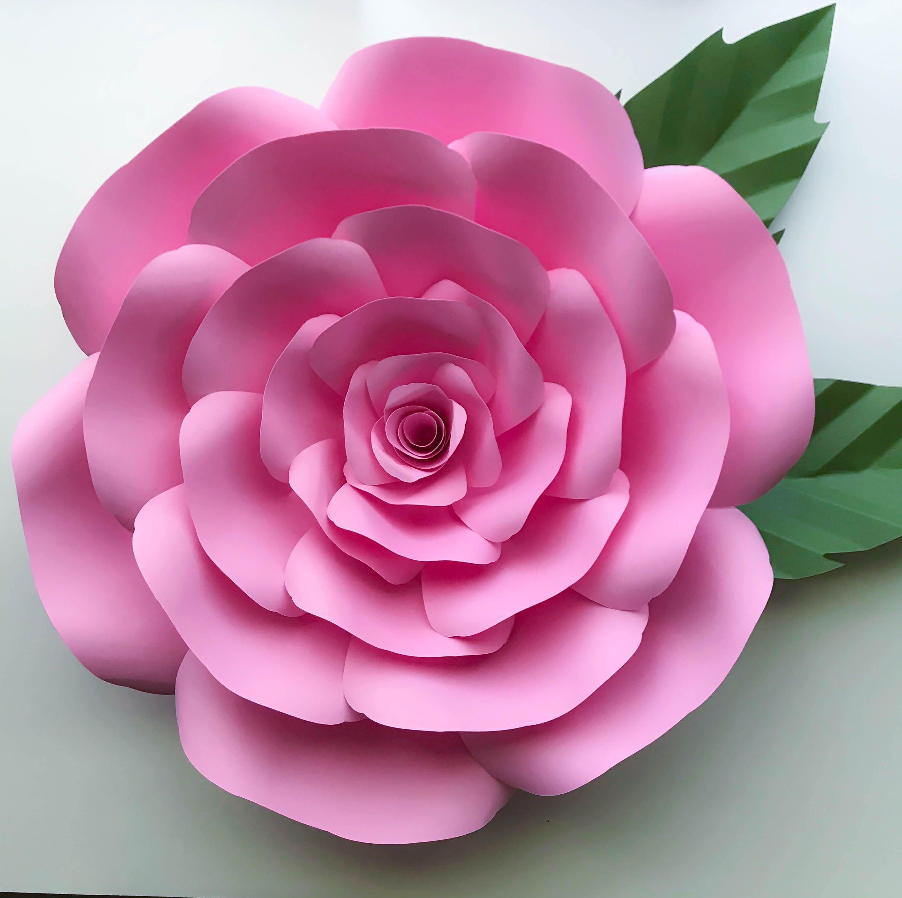 001 Astounding Paper Rose Template Pdf High Def  Flower Giant Free CrepeFull