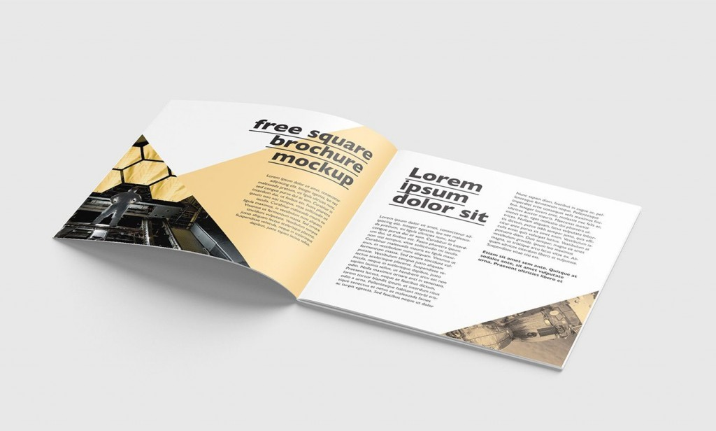001 Astounding Square Brochure Template Psd Free Download Photo Large