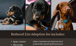 001 Awesome Pet Adoption Flyer Template Concept  Free Event Dog