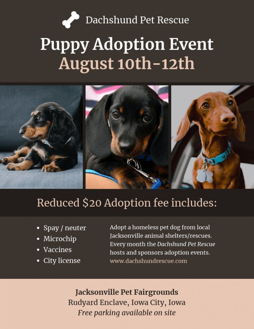 001 Awesome Pet Adoption Flyer Template Concept  Event Free