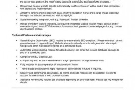 001 Awesome Web Development Proposal Template Pdf Example  Sample
