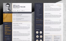 001 Best Resume Template Word 2016 Highest Clarity  Cv Professional