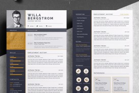 001 Best Resume Template Word 2016 Highest Clarity  Cv Microsoft Download Free