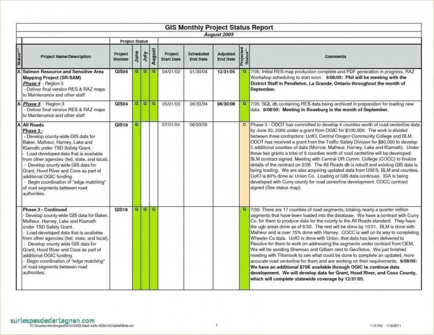 001 Dreaded Project Management Statu Report Template Excel Highest Clarity  Progres Update868