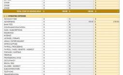 001 Fascinating Cash Flow Sample Excel Inspiration  Sheet Spreadsheet Bar Chart