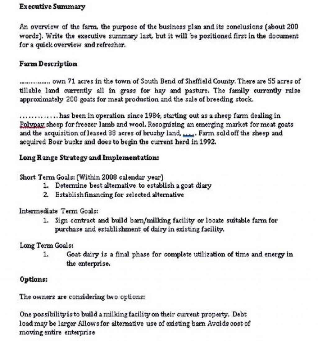 001 Formidable Photography Busines Plan Example High Def  Examples Pdf ProposalLarge