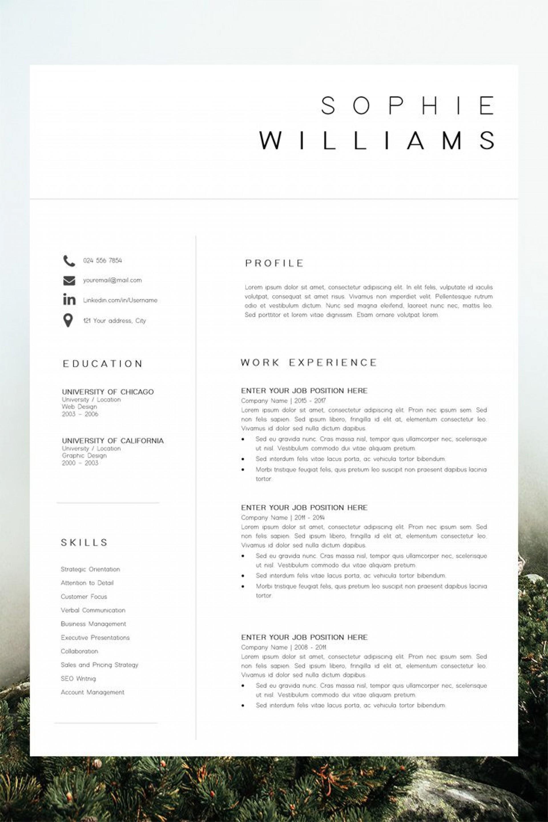 001 Impressive Best Professional Resume Template Picture  Reddit 2020 Download1920