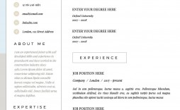 001 Incredible Sample Curriculum Vitae Template Download Idea  Professional Pdf Free For Student
