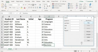 001 Magnificent Excel Data Entry Form Template High Def  Free Download Example Pdf320