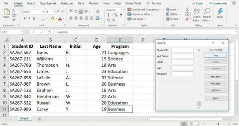 001 Magnificent Excel Data Entry Form Template High Def  Free Download Example Pdf480