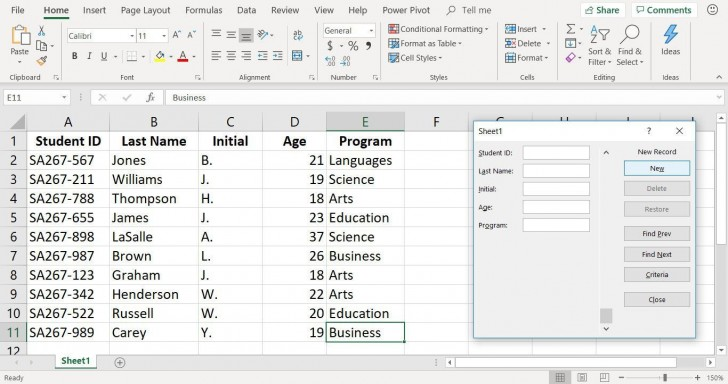 001 Magnificent Excel Data Entry Form Template High Def  Free Download Example Pdf728