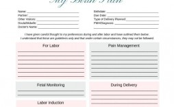 001 Magnificent One Page Birth Plan Template Highest Clarity  Simple Pdf