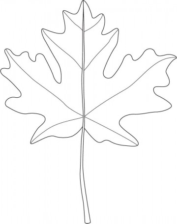 001 Marvelou Blank Leaf Template With Line Photo  Printable360