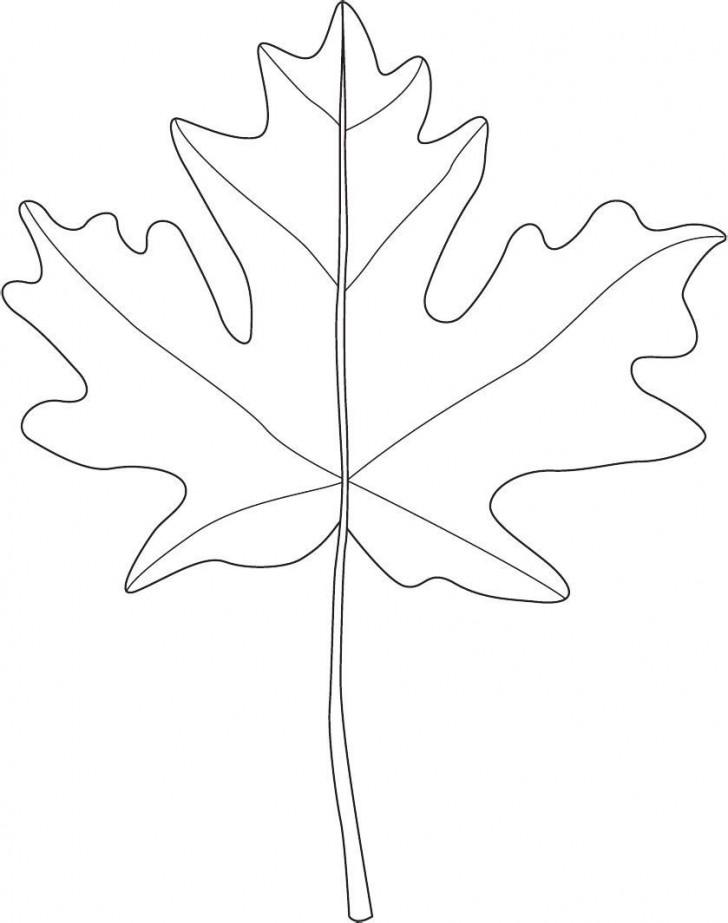001 Marvelou Blank Leaf Template With Line Photo  Printable728