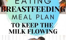 001 Phenomenal Breastfeeding Meal Plan Sample Pdf Photo