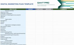001 Phenomenal Digital Marketing Plan Example Doc Photo  Template Sample