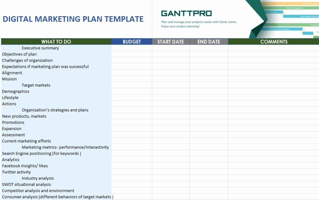 001 Phenomenal Digital Marketing Plan Example Doc Photo  Template SampleFull