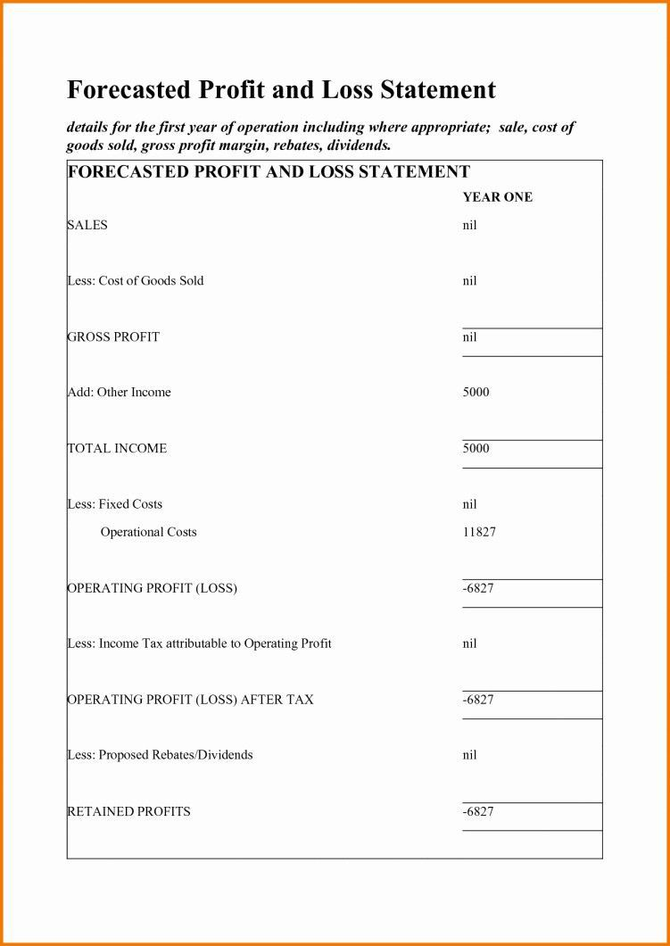 001 Phenomenal Simple Profit And Los Statement Template For Self Employed Photo  FreeFull