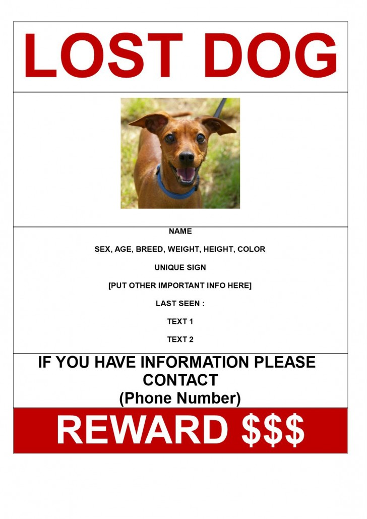 001 Rare Lost Dog Flyer Template Concept  Printable Free Missing Pet728