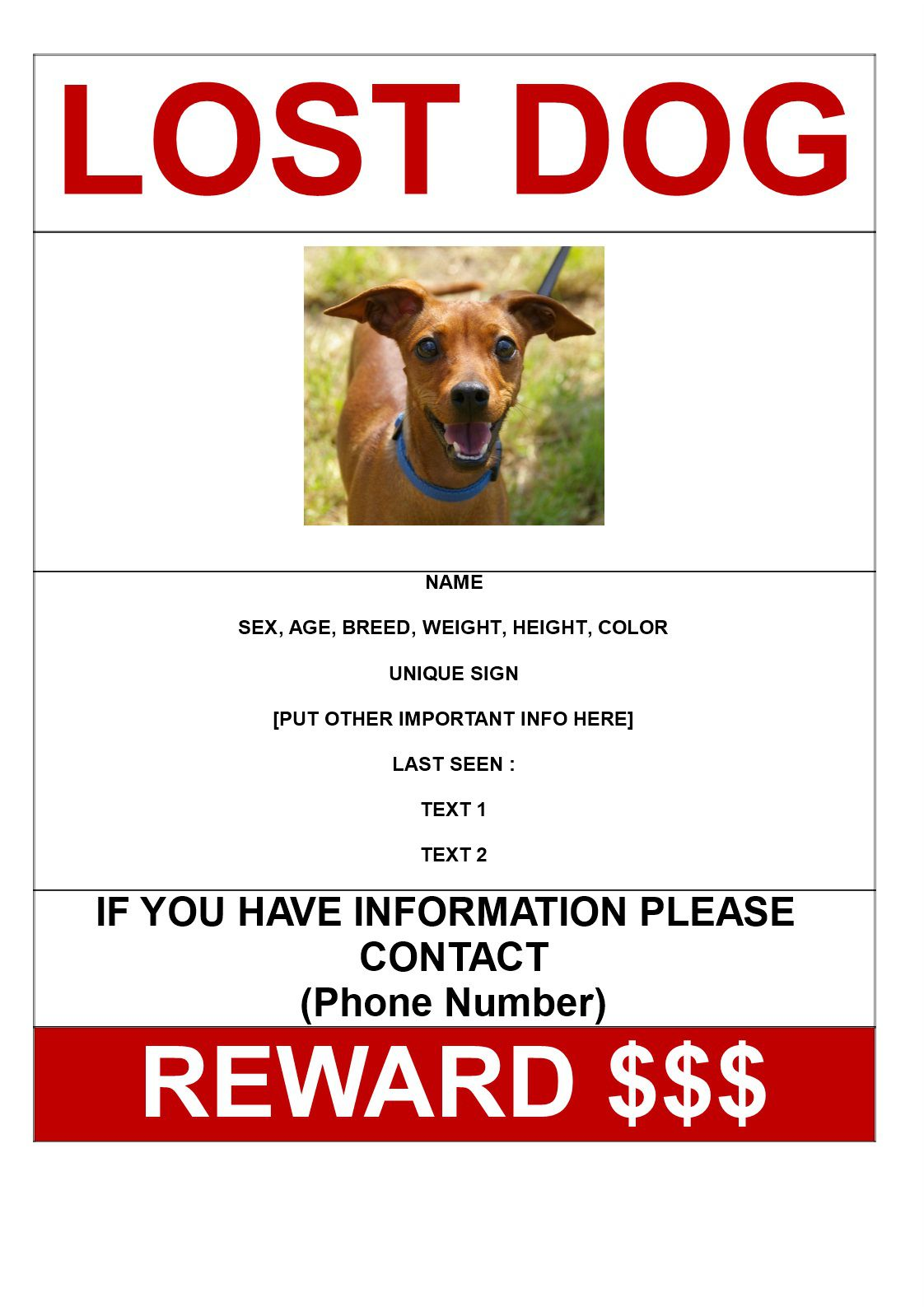 001 Rare Lost Dog Flyer Template Concept  Printable Free Missing PetFull