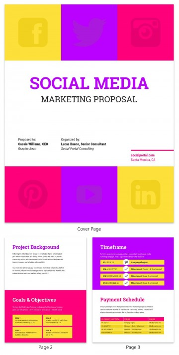 001 Rare Social Media Proposal Template Idea  Plan Sample Pdf 2018360