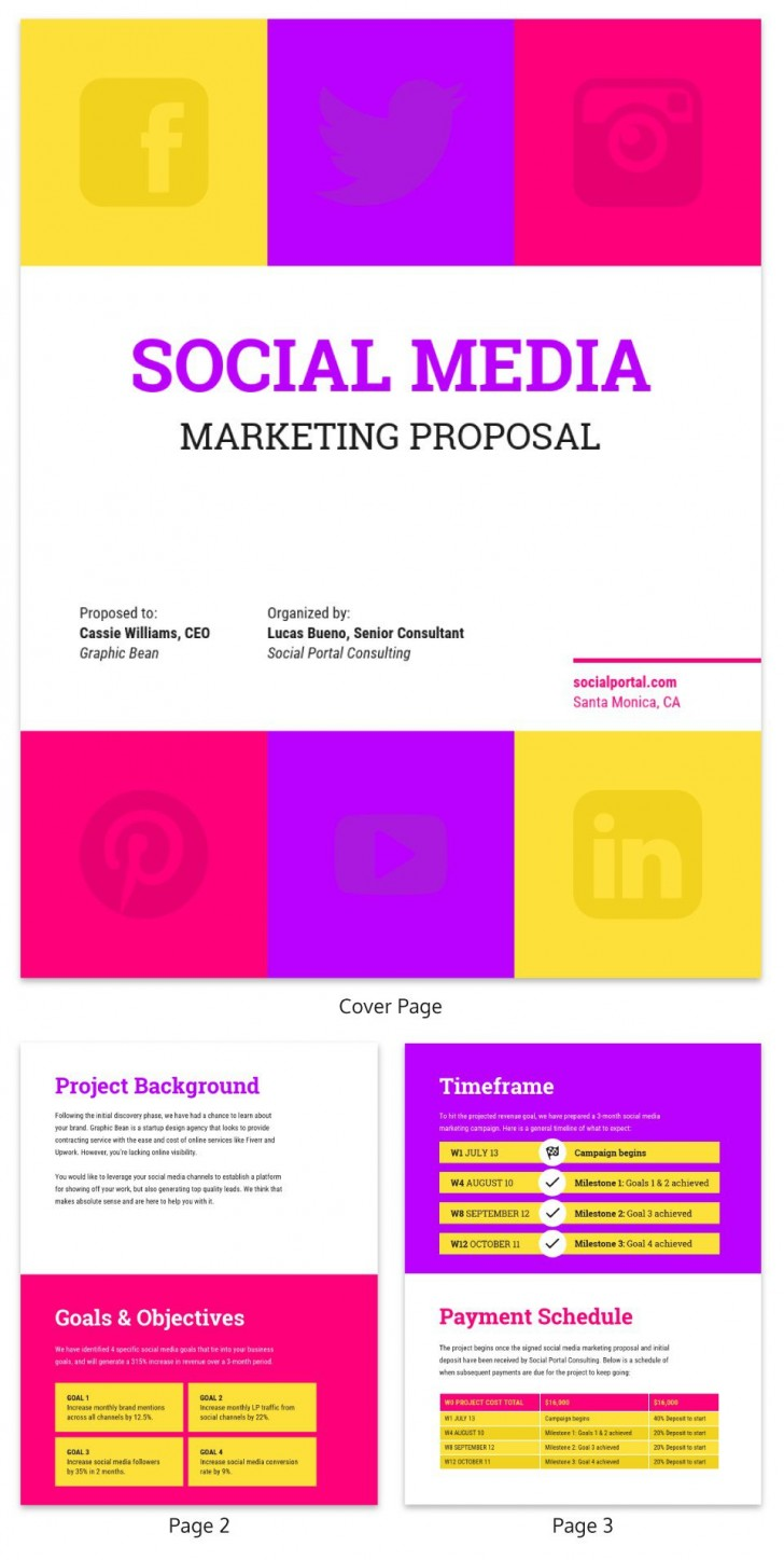 001 Rare Social Media Proposal Template Idea  Plan Sample Pdf 2018728