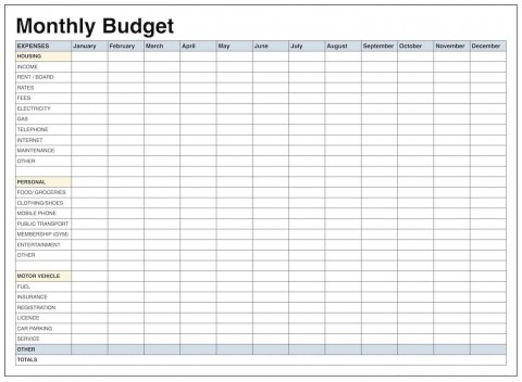 001 Remarkable Excel Monthly Budget Template High Def  South Africa480