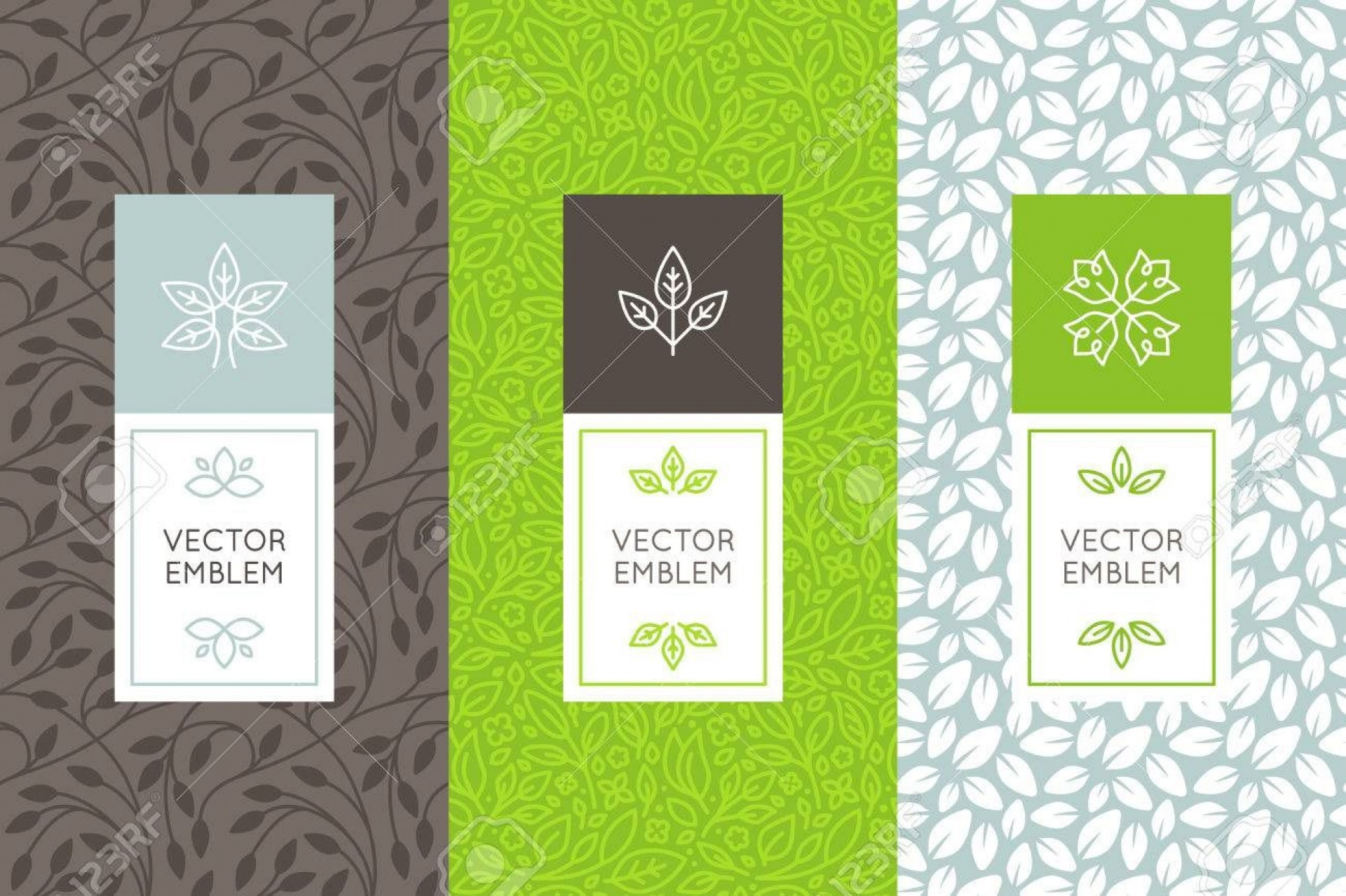 001 Remarkable Product Packaging Design Template High Resolution  Templates Free Download Sample1920
