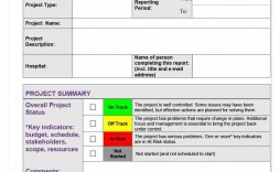001 Sensational Project Statu Report Template Highest Quality  Excel Download Pdf