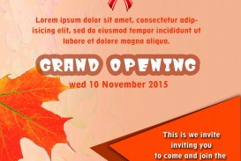 001 Shocking Grand Opening Flyer Template Example  Free Psd Busines