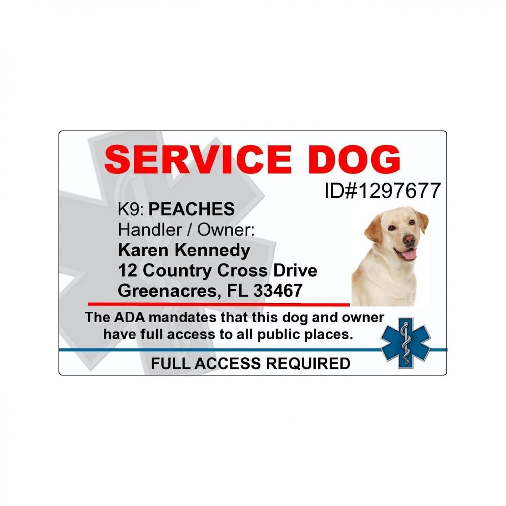 001 Shocking Service Dog Certificate Template Photo  Printable Id FreeFull