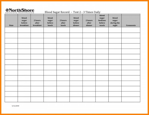 001 Simple Blood Glucose Spreadsheet Template Idea  Tracking480