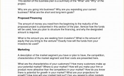 001 Singular Busines Plan Format Word Doc High Def  Template Free Download Example Document