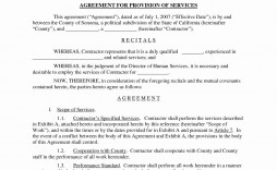001 Singular It Service Contract Template Inspiration  Support Agreement Provider South Africa Managed Example