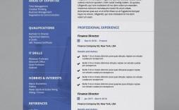 001 Singular Professional Cv Template Free Online Idea  Resume