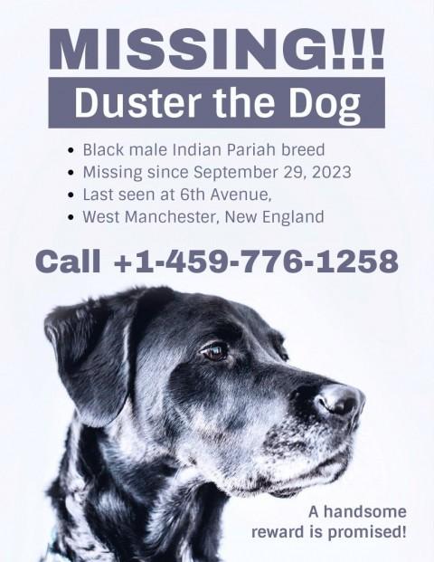 001 Striking Missing Pet Poster Template Design  Free Uk480