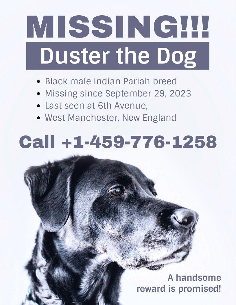 001 Striking Missing Pet Poster Template Design  Uk WordFull