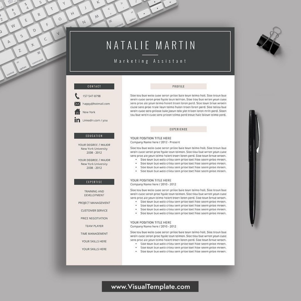 001 Striking Resume Template M Word 2019 Picture  Microsoft FreeLarge