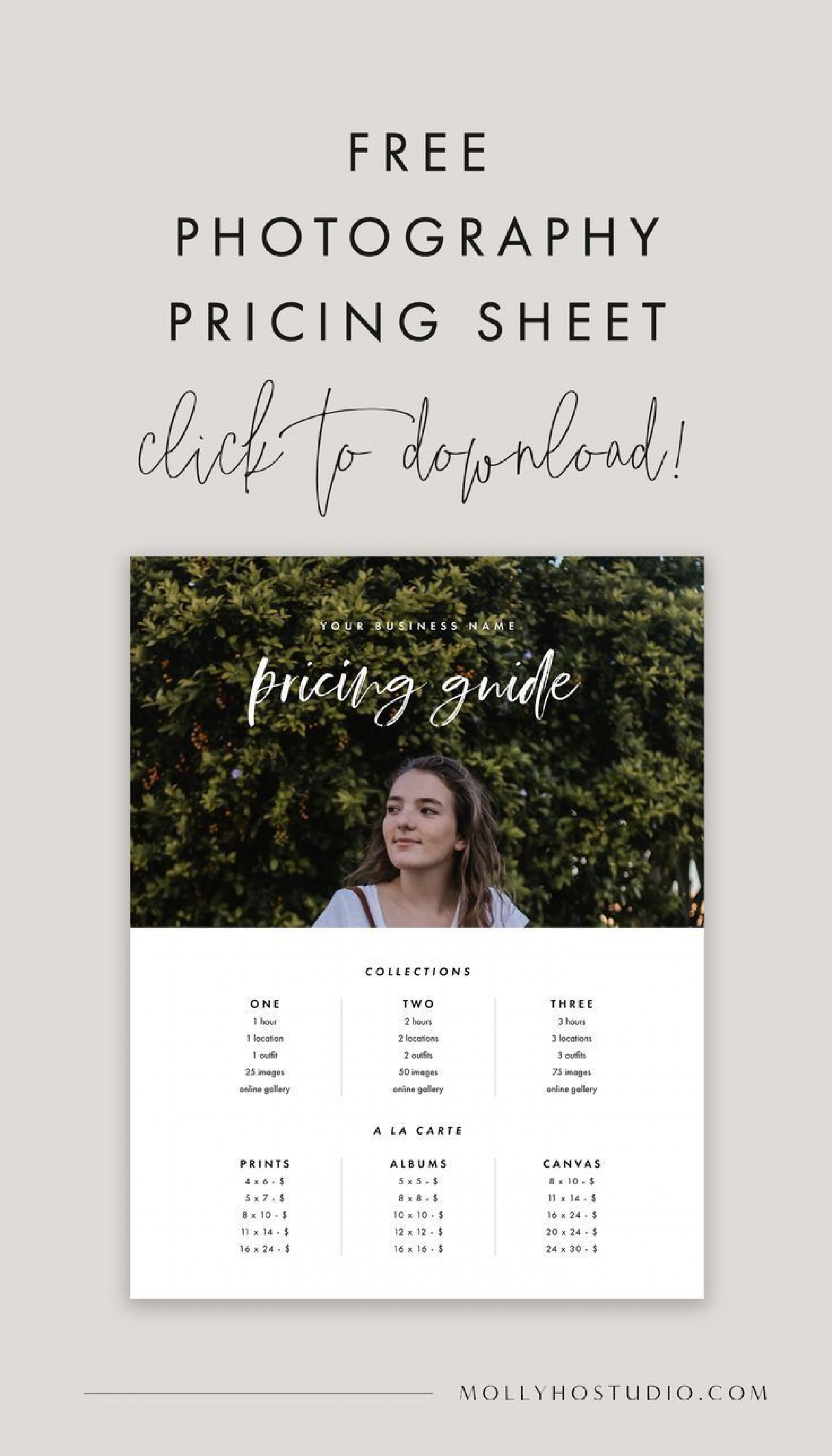 001 Top Free Photography Package Template Concept  Pricing1920