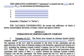 001 Unique Operation Agreement Llc Template Sample  Operating Florida Indiana Single Member California