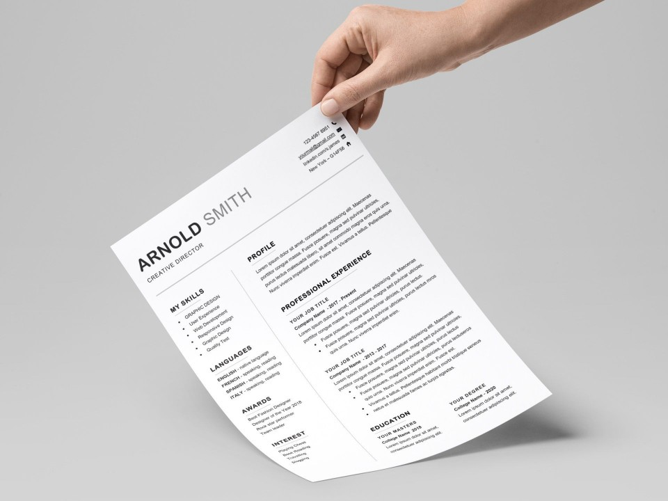 001 Unique Professional Resume Template 2018 Free Download High Def 960