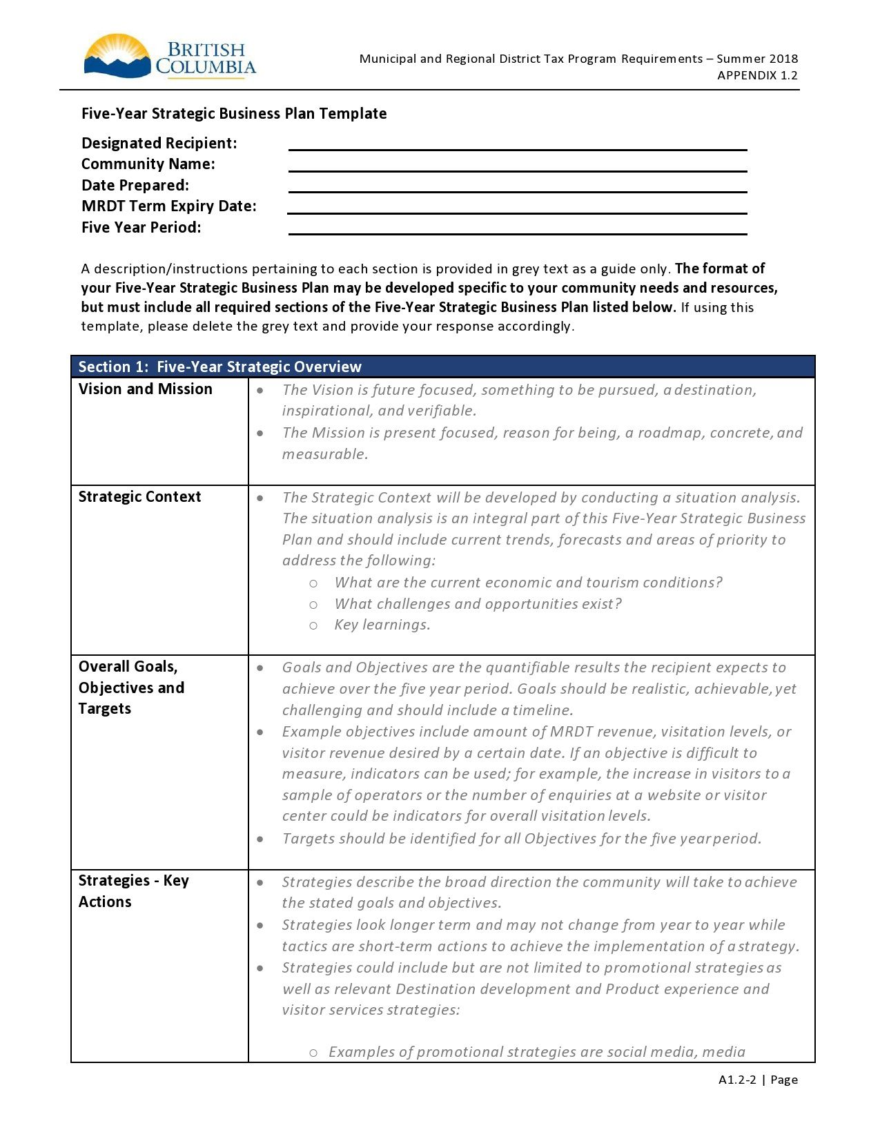 001 Unusual 5 Year Plan Template Image  Pdf Busines For CoupleFull